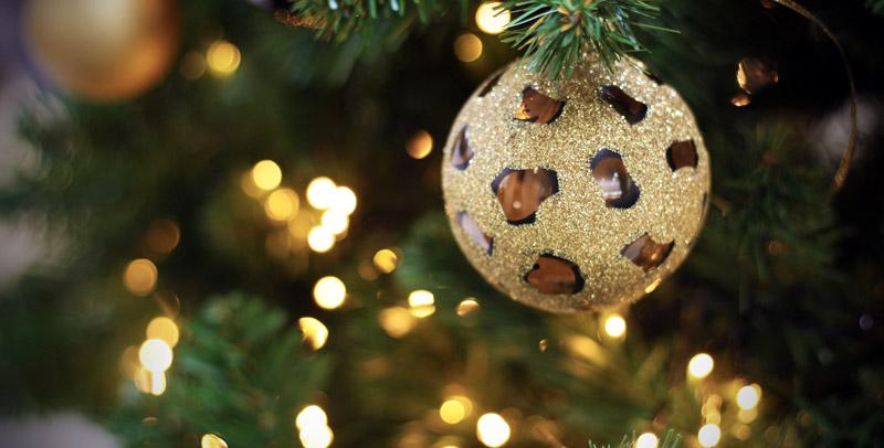 Come Mettere le Luci sull'Albero di Natale